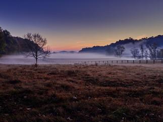 Fog sunrise.jpg