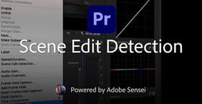 שימוש ב-Scene Edit Detection בפרמייר פרו