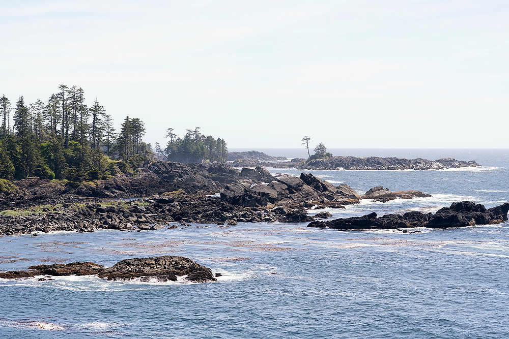 Ocean view from a Ucluelet wedding at Black Rock Resort. Photographed by Ucluelet Photographer Kaitlyn Shea.