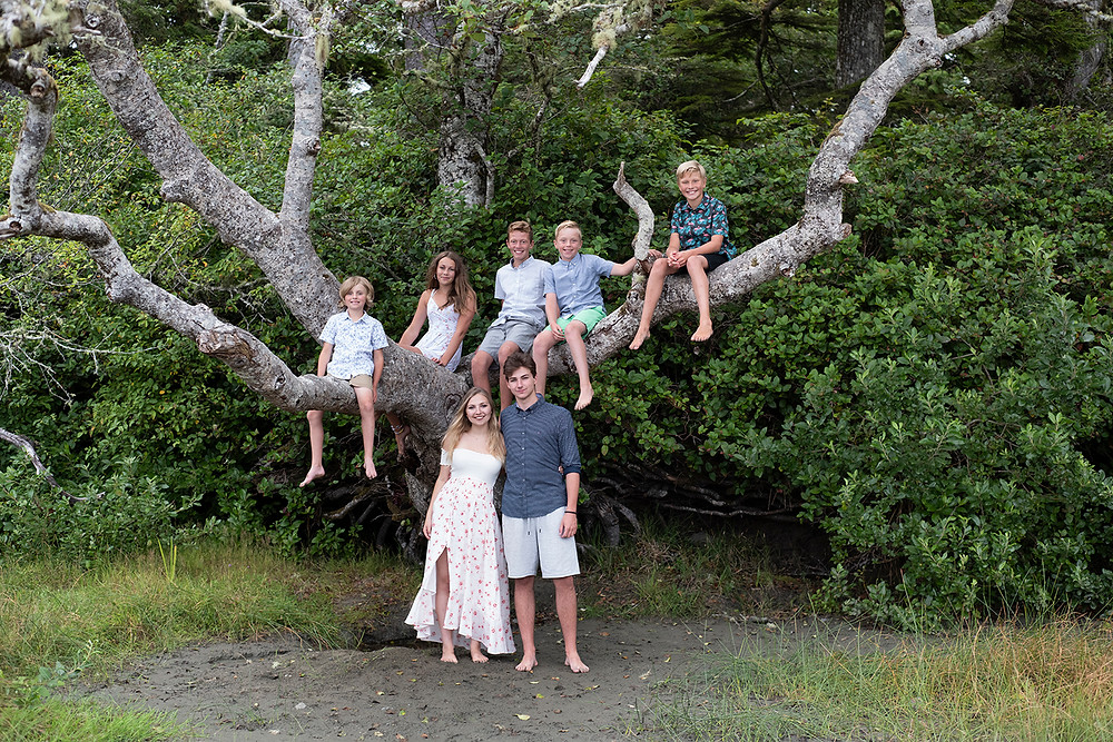 Kids sitting in tree on Middle Beach in Tofino. Photographed by Tofino photographer Kaitlyn Shea.