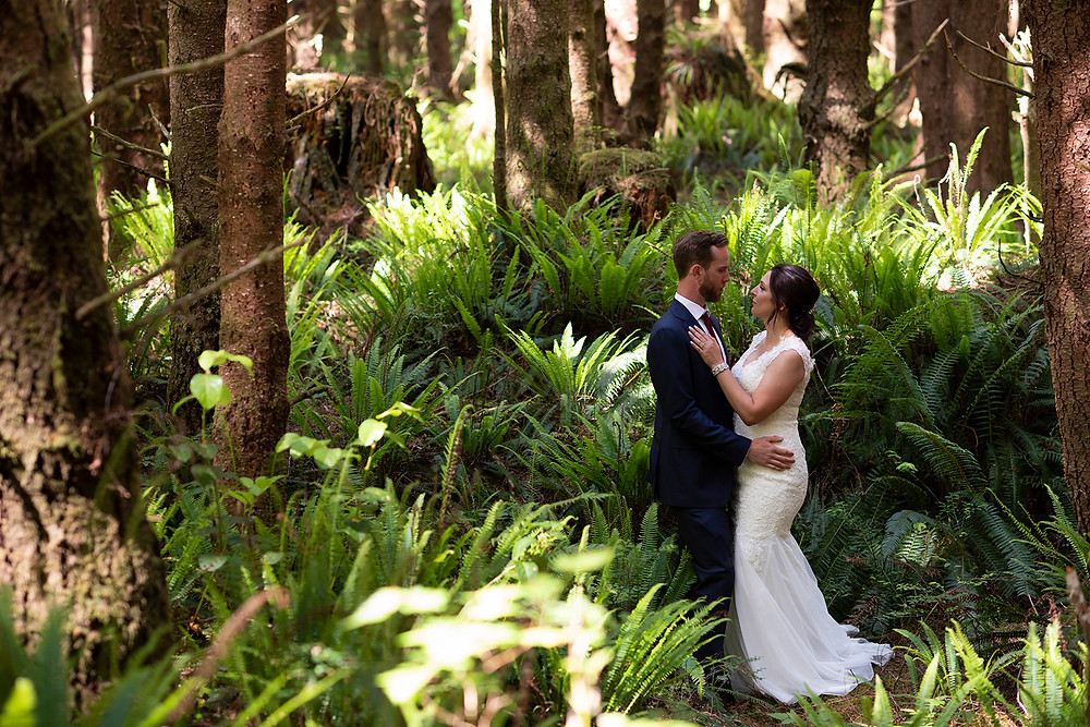 Bride and groom stand amongst the ferns at their Tofino forest wedding. photographed by Kaitlyn Shea.