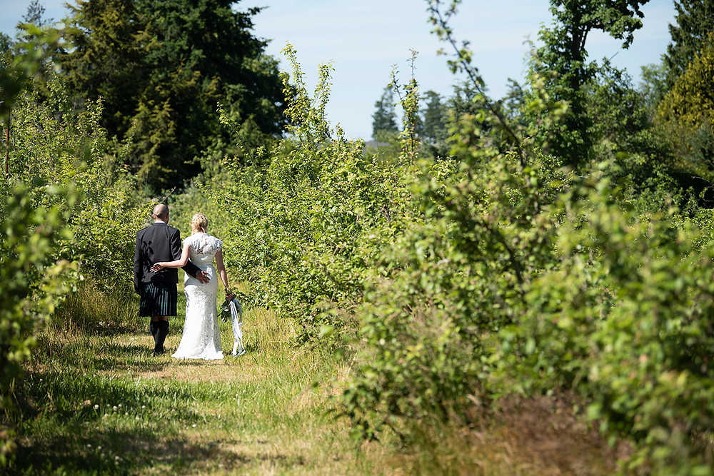 Couple walk together through the apple orchard at Sea Cider in Victoria. Photographed by Kaitlyn Shea.