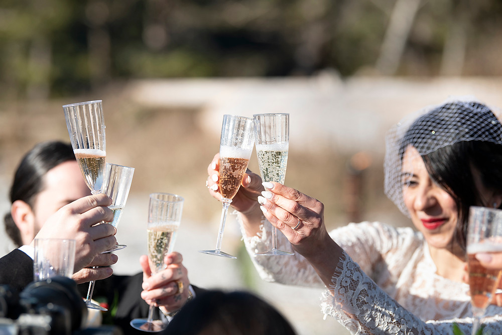 Everyone toasts their glasses during an elopement in Ucluelet. Photographed by Kaitlyn Shea.