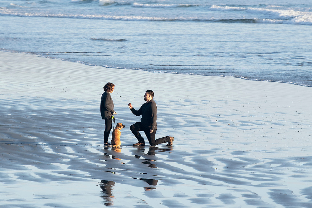 Man proposes to his love on Long Beach in Tofino. Photographed by Tofino photographer Kaitlyn Shea.
