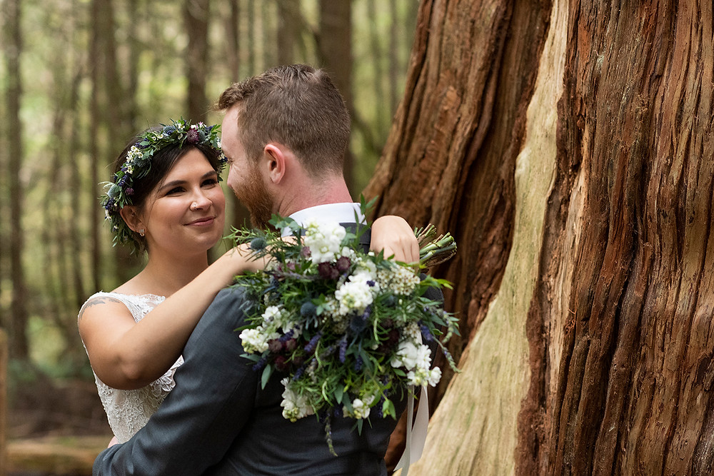 bride and groom by giant cedar tree at their Schooner Cove wedding in Tofino. Photographed by Kaitlyn Shea