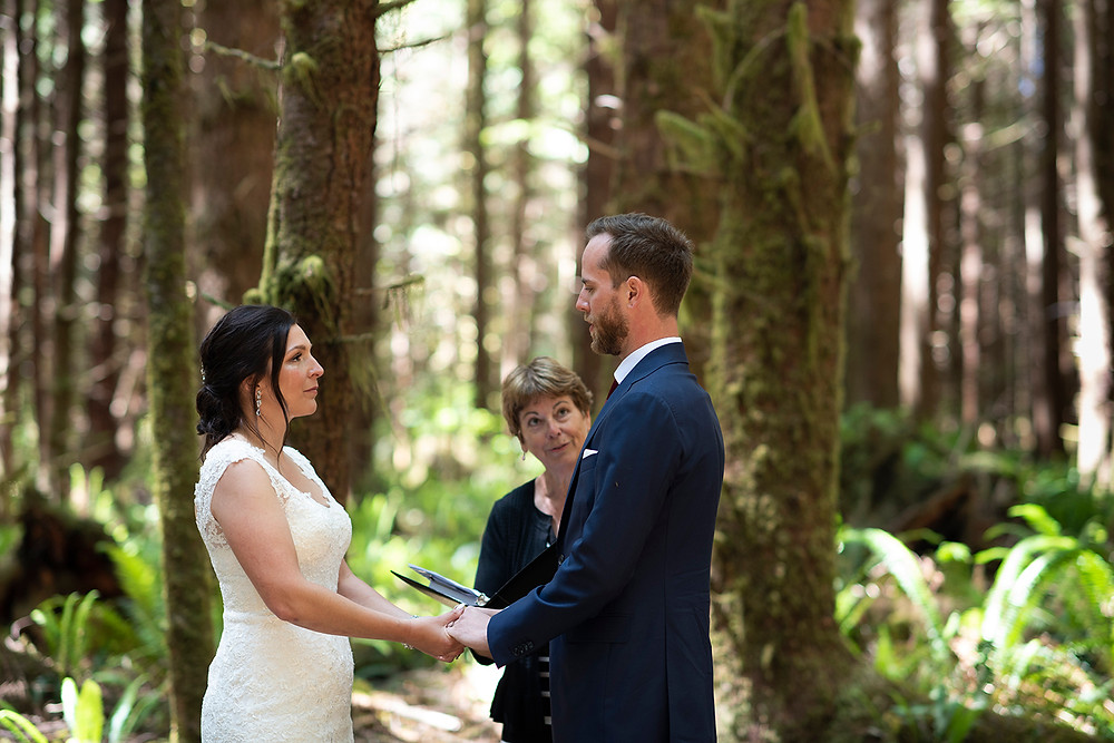 Wedding in the forest in Tofino BC. Photographed by Kaitlyn Shea.