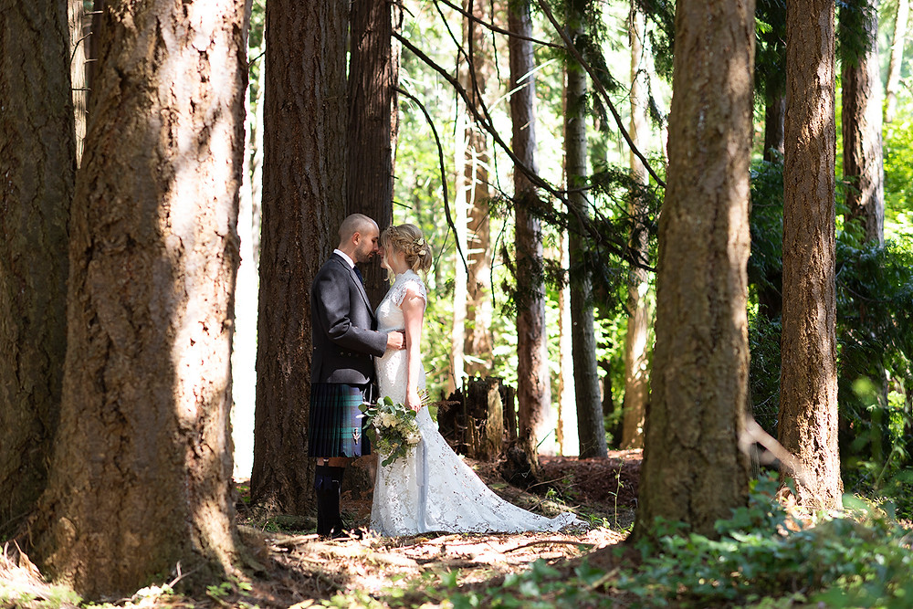 Bride and groom stand together between trees in the forest at Sea Cider in Victoria. Photographed by Kaitlyn Shea.
