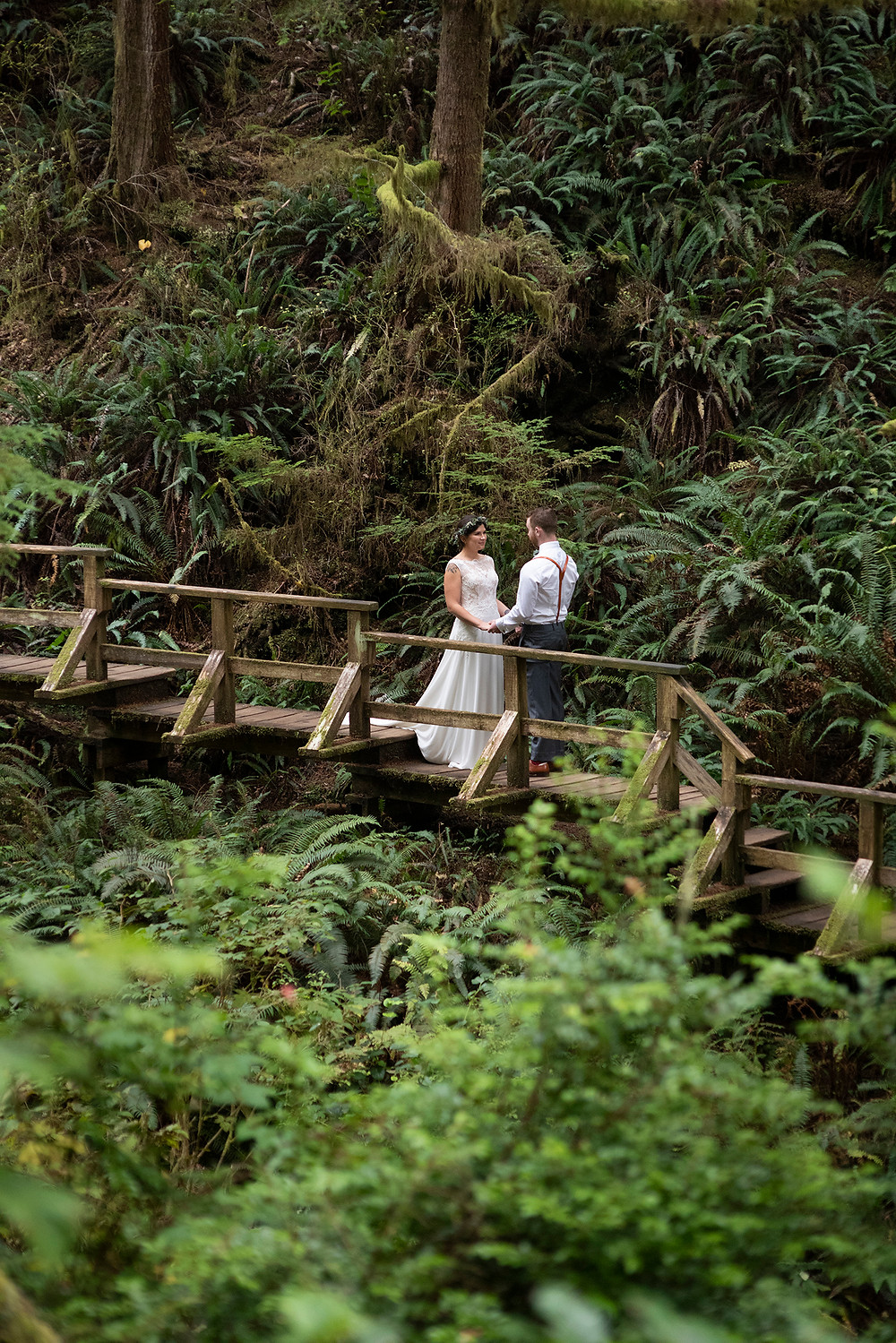 bride and groom amongst ferns on Schooner Cove Trail at their Tofino wedding. Photographed by Kaitlyn Shea