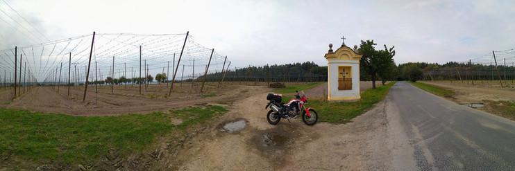 chmelnice u Podbořan