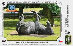A-0314-Teplice-Kolostujovo-bohatstvi-137