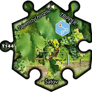 puzzle_Tripper_Satov_Tajemstvi hroznu_T1