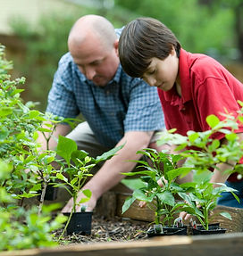 Father and son gardening.jpg