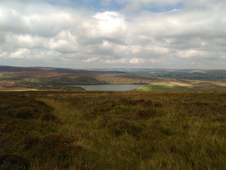 Dalesway - A multi-day summer hike post Covid