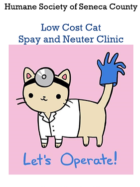 spay neuter flyer.png