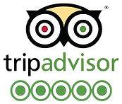 PTOWN MASSAGE TRIP ADVISOR REVIEWS