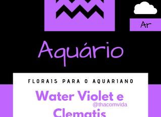 Florais para o signo de Aquário
