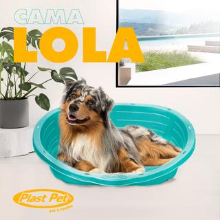 CAMA_LOLA_PLAST_PET(5).png