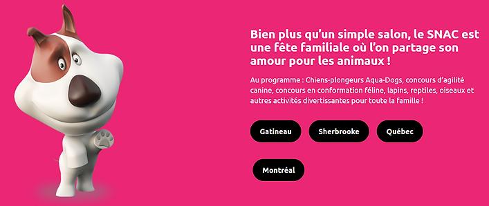 Screenshot_2020-02-24 Le Salon National