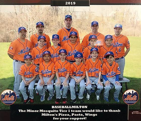 Milton Mets, Baseball Milton