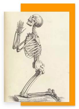 Blog Skeleton.png