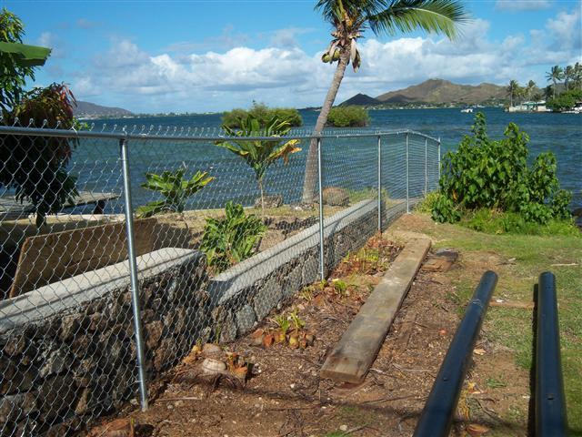 Chain Link - Haleiwa 2