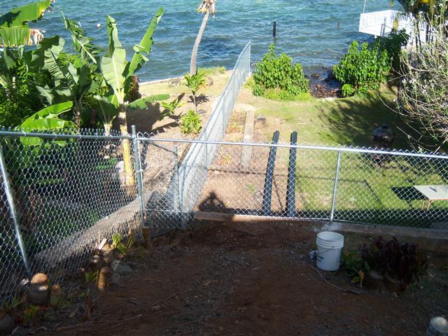 Chain Link - Haleiwa