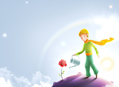 """5 lições do livro """"O Pequeno Príncipe"""" sobre Experiência do Cliente"""
