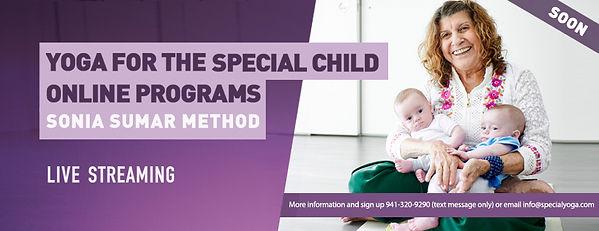 banner online programs.jpg