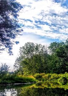 Woods Creek Grand Island