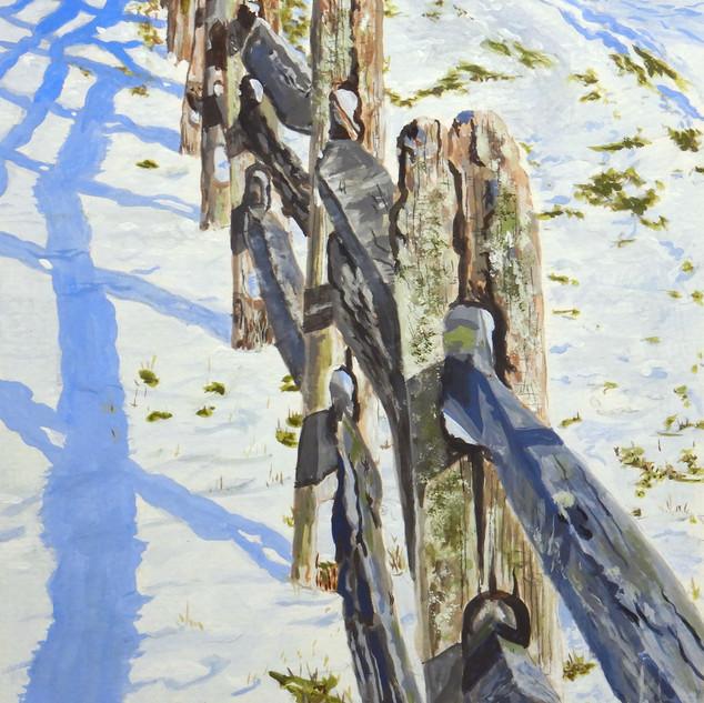 Fence at Knox Farm