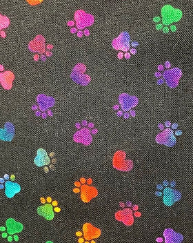 Rainbow Pawprints Small 2.jpeg