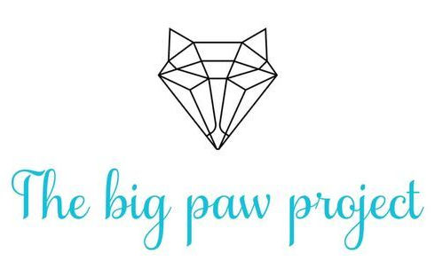 big paw project.jpg