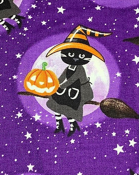 Halloween Cat on a Broom.jpeg