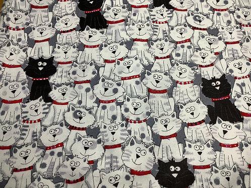 Cats (Black & White)