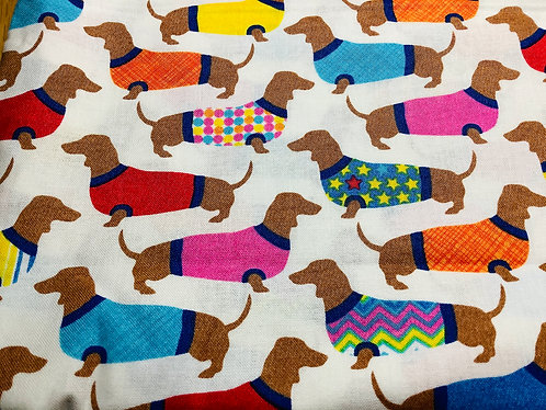 Dachshunds in Sweaters