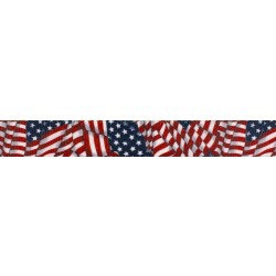 American Flag (UV & Water Resistant)