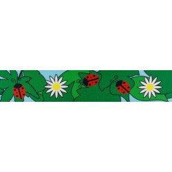 Ladybugs & Daisies (UV & Water Resistant)