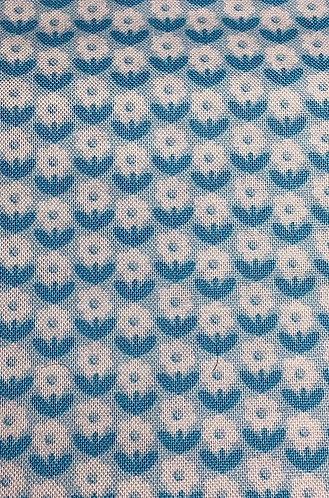 Daisies (Blue & White)
