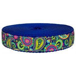 Multicolor Paisley (UV & Water Resistant)