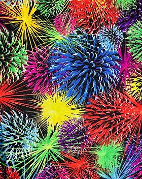 Rainbow Fireworks.jpeg
