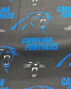 Carolina Panthers 2.JPG
