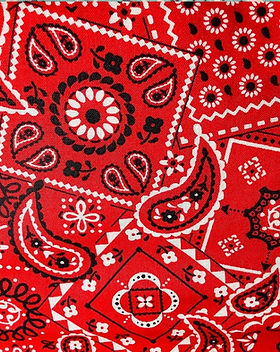 Red Paisley 2.jpeg