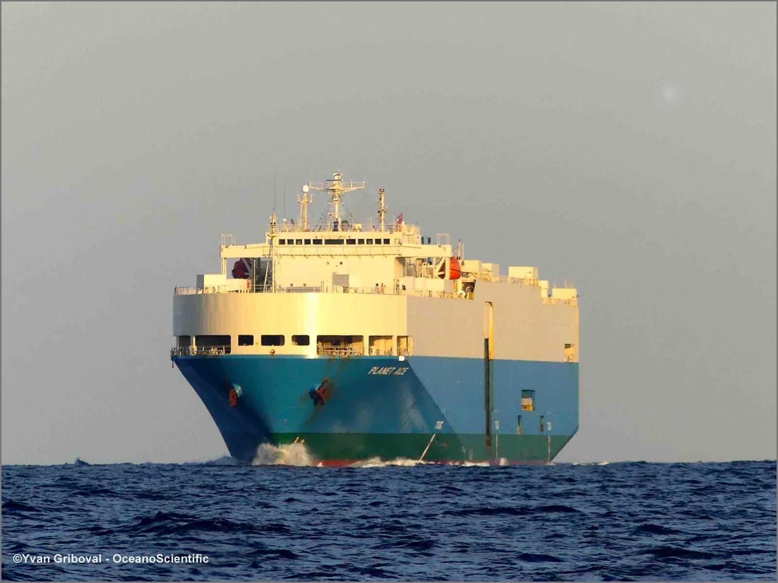Cargo Planet Ace-Algérie