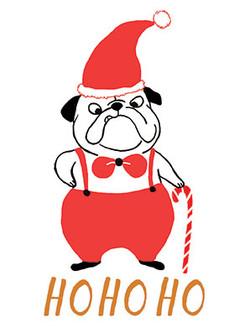 Lulu-Mayo-pug-xmas-card