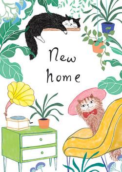 cat-plant-new-home-lulu-mayo