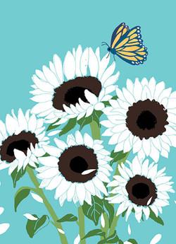 flower-sympathy-lulu-mayo