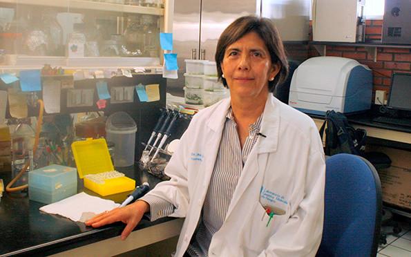 Angélica González. Guanajuato University, Mexico.