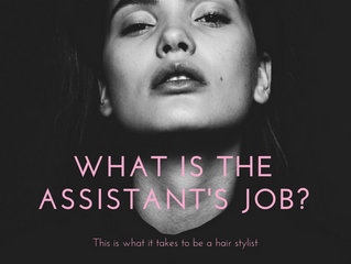 What is the Assistant's job?