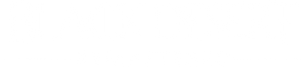 bdo new logo.png