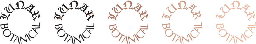 LB_logoprocess-01.png